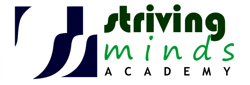 Striving Mind Academy And Consultancy Pty Ltd Kempton Park